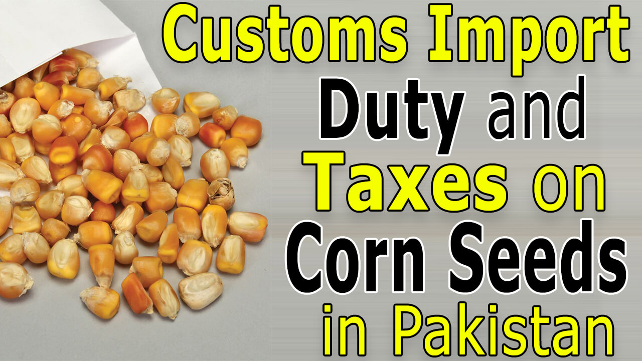 Customs-Import-Duty-and-taxes-on-Corn-Seeds-in-Pakistan