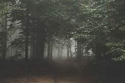 Το κάστρο πίσω από την ομίχλη....