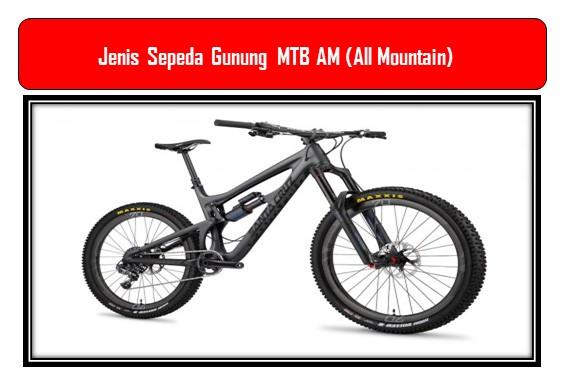 Jenis Sepeda Gunung  MTB AM (All Mountain)