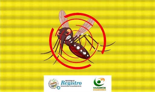 Dengue: Boletim Epidemiológico 256 casos em Registro-SP