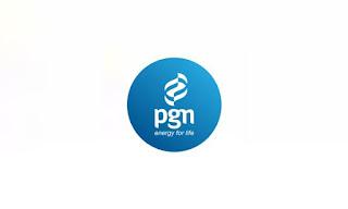 Lowongan Kerja D3 S1 PT Perusahaan Gas Negara (Persero) Tbk Tahun 2020