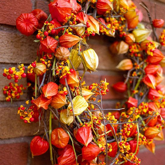 Autumn Wreath Ideas Lampionblumen Grape Vines Colorful Orange