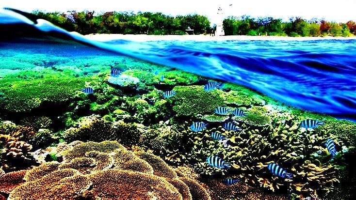 Localit pi belle del mondo per immersioni e snorkeling for Le piu belle case del mondo foto
