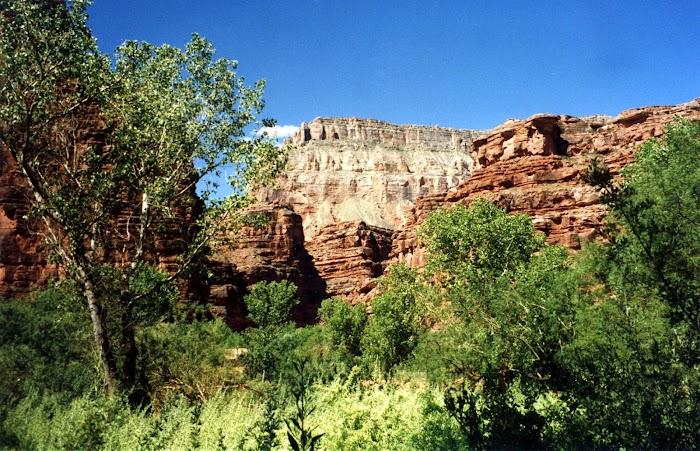 Explore amazing beauty nature canyon on earth Havasu Canyon