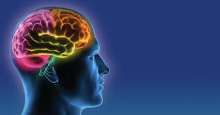 iherb для мозгов