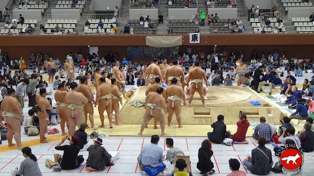 entrainement du matin des sumos au basho de Kyoto 2015