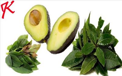 Manfaat Alpukat dari buah sampai kulitnya untuk kesehatan