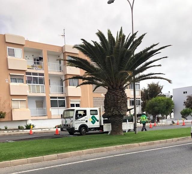 AM-CC pide al alcalde de Puerto del Rosario que cumpla con su compromiso pre electoral y pare obras de tuberías de la DISA que ayer se reanudaron