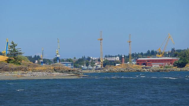 Numerous cranes over Esquimalt harbour...