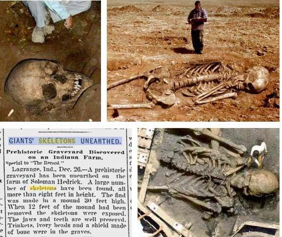 rinvenimenti rest scheletri giganti