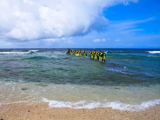 海底珊瑚礁豐富,有千年巨形活珊瑚大香菇