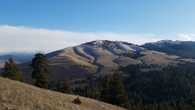 Barmeyer Trail in Missoula, Montana