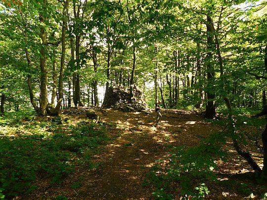 Kamień nad Jaśliskami (857 m n.p.m.).