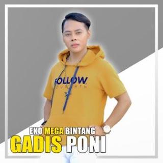 Lagu ini masih berupa single yang didistribusikan oleh label Global Musik Lirik Lagu Eko Mega Bintang - Gadis Poni