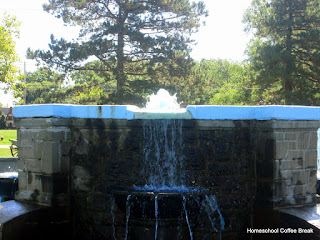 The Summer of Landon PhotoJournal on Homeschool Coffee Break @ kympossibleblog.blogspot.com and on Just A Second @ JustASecondBlog.blogspot.com