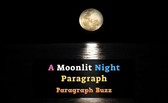 A Moonlit Night Paragraph