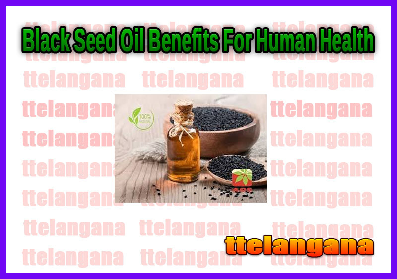 Black Seed Oil Benefits For Human Health