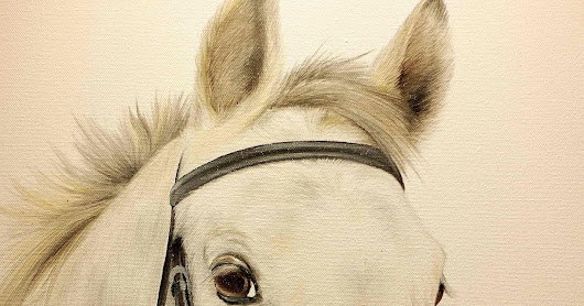 Horse Portrait - the perfect gift