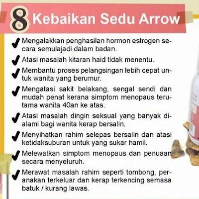Sedu Arrow sendayu tinggi
