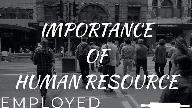 Importance of human resource