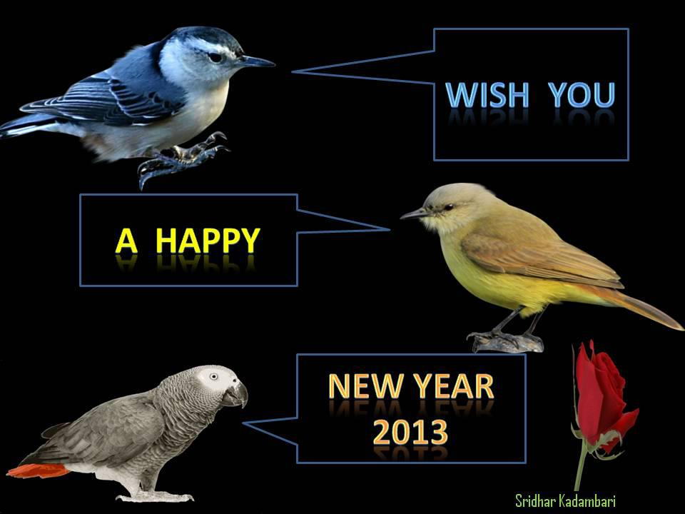 My Old Hindi Song Collection: HAPPY NEW YEAR 2013