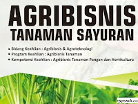 Download Rpp Mata Pelajaran Agribisnis Tanaman Sayuran Smk Kelas XI Kurikulum 2013 Revisi 2017 / 2018 Semester Ganjil dan Genap | Rpp 1 Lembar