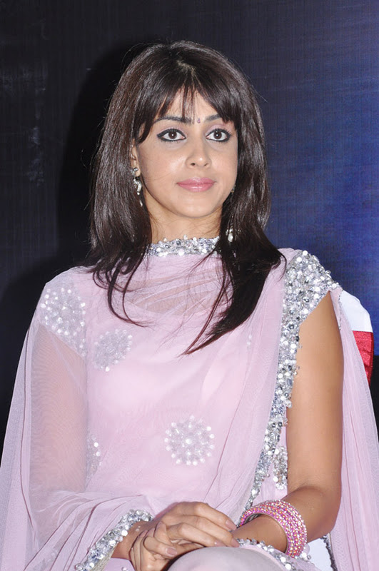 All World Wallpapers: Genelia Cute Photos In Pink Dress