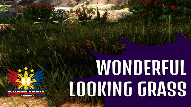 Modded SKYRIM Special Edition - WONDERFUL LOOKING GRASS