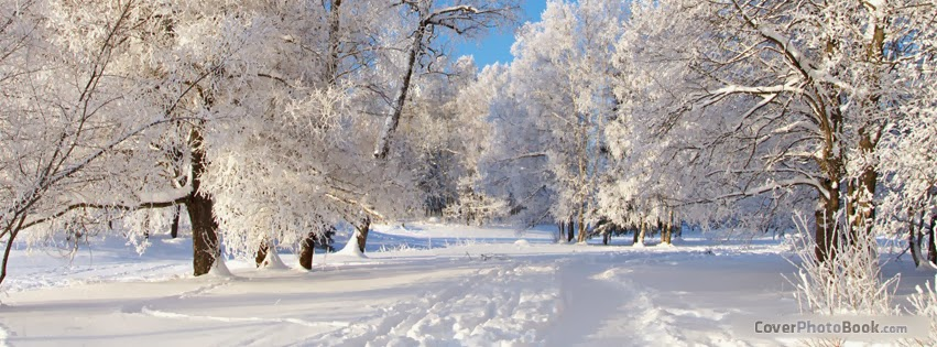 Beautiful Wallpaper: Free Winter Facebook Covers For Timeline