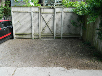 Toronto Parking Pad Cleanup Cabbagetown After by Paul Jung Gardening Services a Toronto Gardening Company