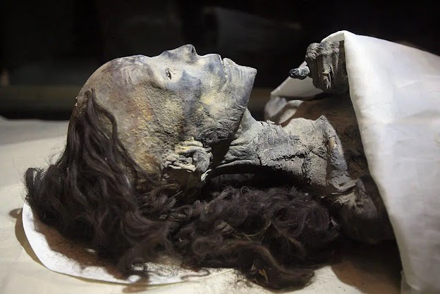 How the Pharaonic Queens of Egypt Preserved the Beauty of their Hair? Archaeologists Answer