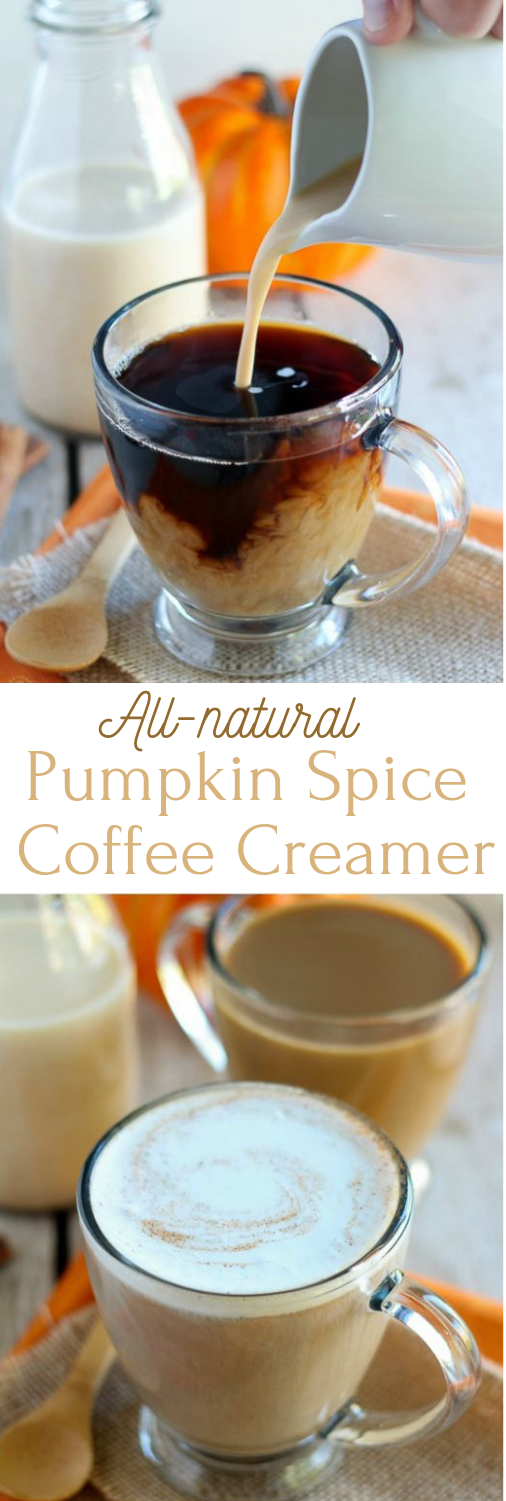 ALL-NATURAL PUMPKIN SPICE COFFEE CREAMER #drink #coffee