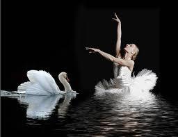 El Lago de los Cisnes de Chaikovsky  Partitura de Flauta, Saxofón, Violín, Clainrete, Trompeta, Saxofón Tenor, Tuba, Bombardino, Viola, Chelo, Fagot, Oboe, Saxo Soprano, Trombón de El Lago de los Cisnes. Partitu