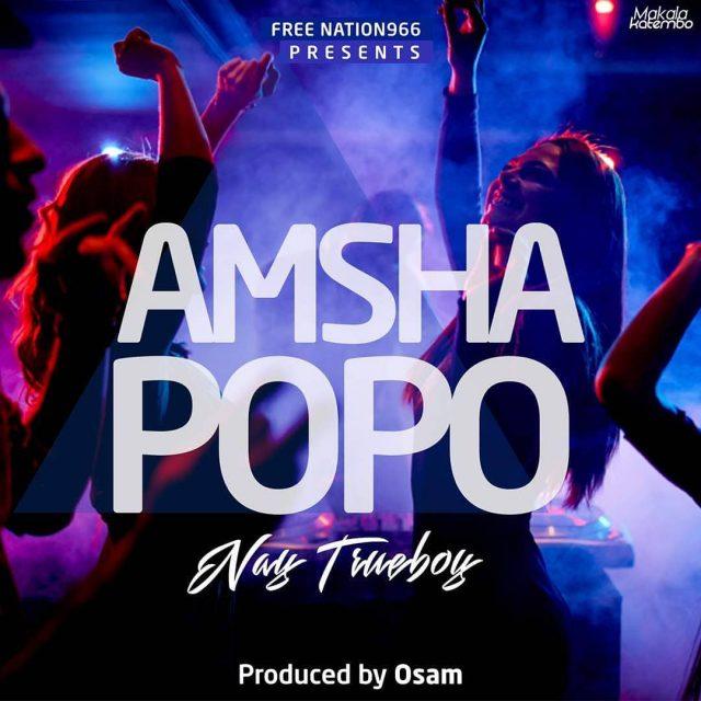 Download Mp3 | Nay Wa Mitego - Amsha Popo