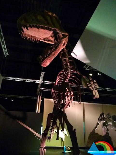 Reproducción de esqueleto de T-Rex en el museo paleontológico de Dinópolis
