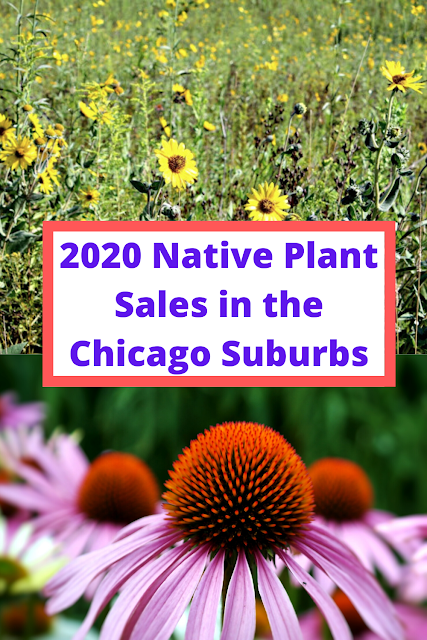 2020 Native Plant Sales in the Chicago Suburbs