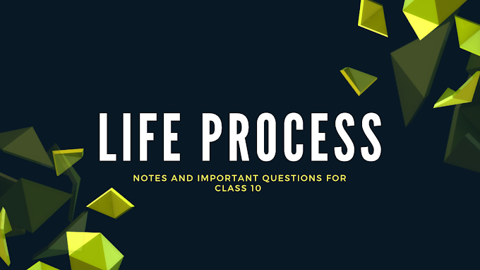 Life Process   Notes of Life Process Class 10   Science Notes for Class 10   Most Important Question of Science   Score 90% Above in Board Examination   life process in hindi