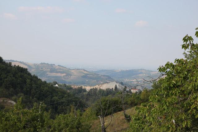 Bologna, Valsamoggia - Viinitarhoja ja koirahommia 12