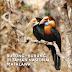 E-Book Burung-burung di Taman Nasional Matalawa
