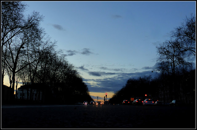 Sunset Avenue de Paris Versailles