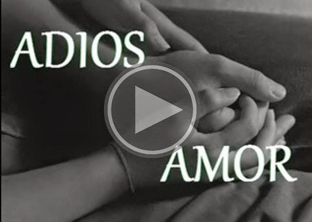 Videos De Amor: Vídeos De Amor Y Amistad