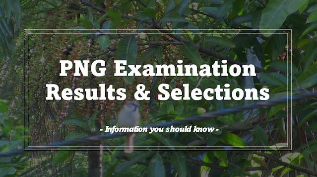 2022 Grade 11 selection list