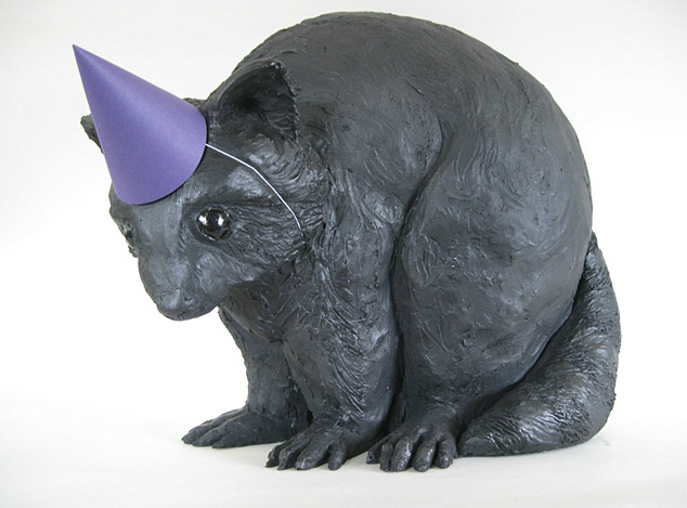 Darla Jackson, racoon in party hat