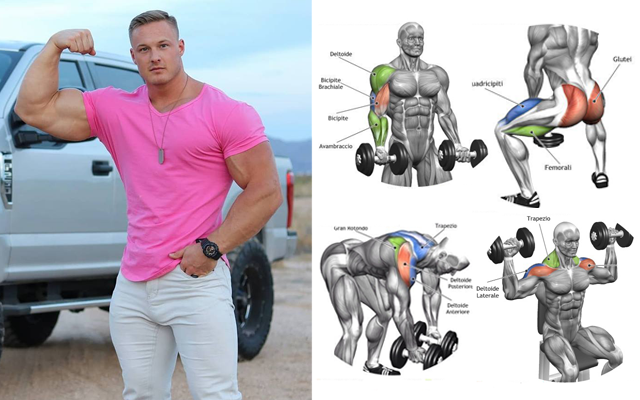 Gain Muscle Mass Using Only Dumbbells With 10 Demonstrated Exercises