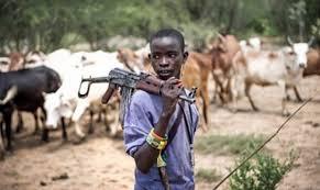 Fulani attack