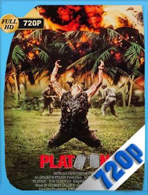 Pelotón (1986) HD[720P] latino[GoogleDrive] DizonHD