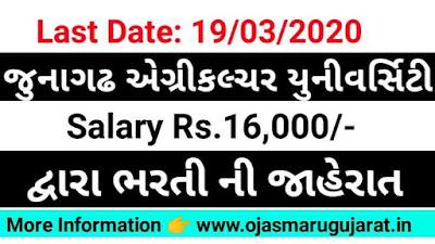 JAU Job Bharti, JAU Job Recruitment 2020, Ojas Bharti, Ojas Maru Gujarat, Maru Gujarat Bharti 2020,