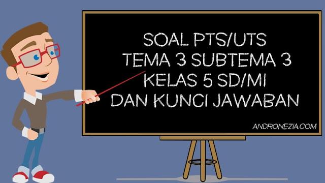 Soal PTS/UTS Kelas 5 Tema 3 Subtema 3 Semester 1