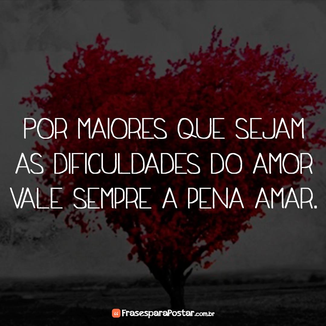 Por maiores que sejam as dificuldades do amor vale sempre a pena amar.