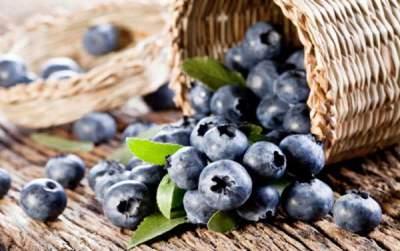 Cegah diabetes dengan rutin konsumsi blueberry